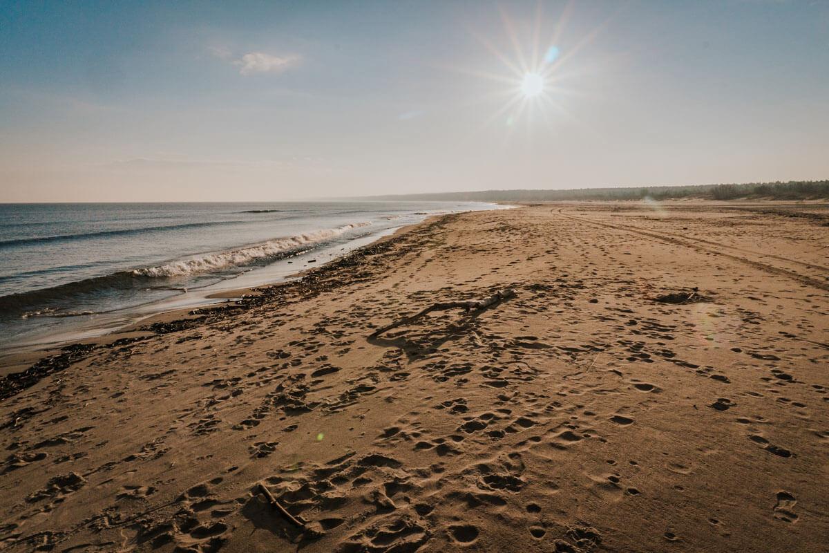 Gdzie Wisła wpada do Morza Bałtyckiego?