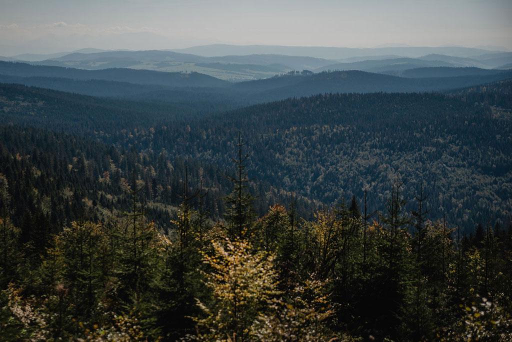 Rysianka - widoki na Tatry