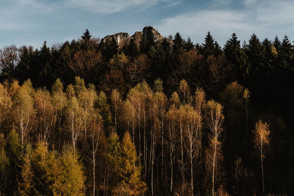 Widok na Zegarowe Skały w Dolinie Wodącej