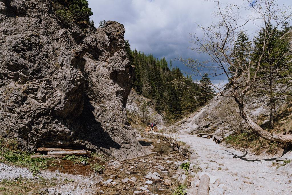 Szlak przez Dolinę Białego Potoku