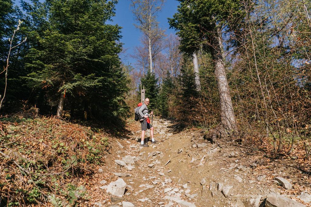 Góra Lubogoszcz - droga z Kasiny Wielkiej