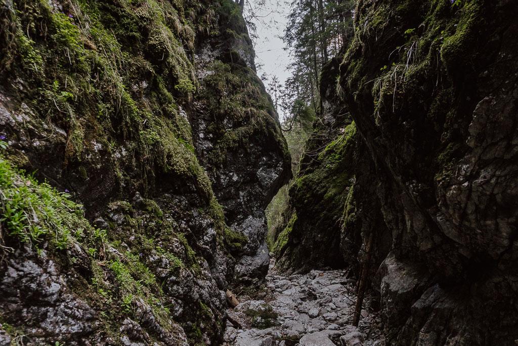Wąwóz Kraków w Tatrach