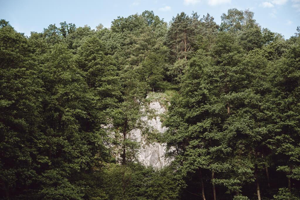 Dolina Mnikowska - skałki