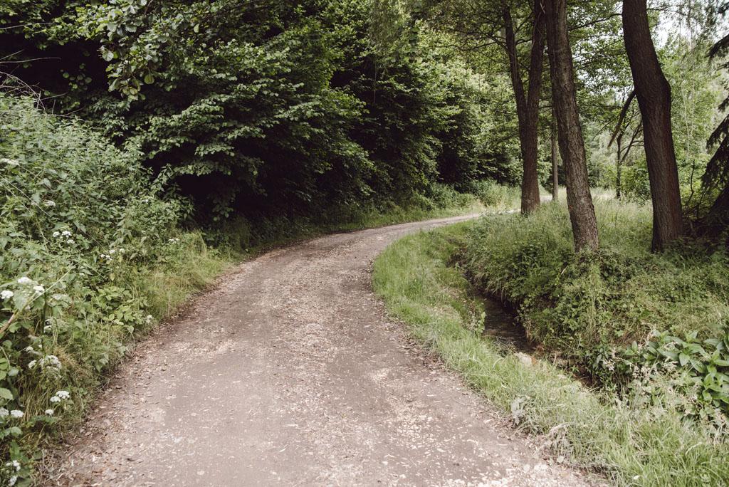 Szlak przez Dolinę Brzoskwini