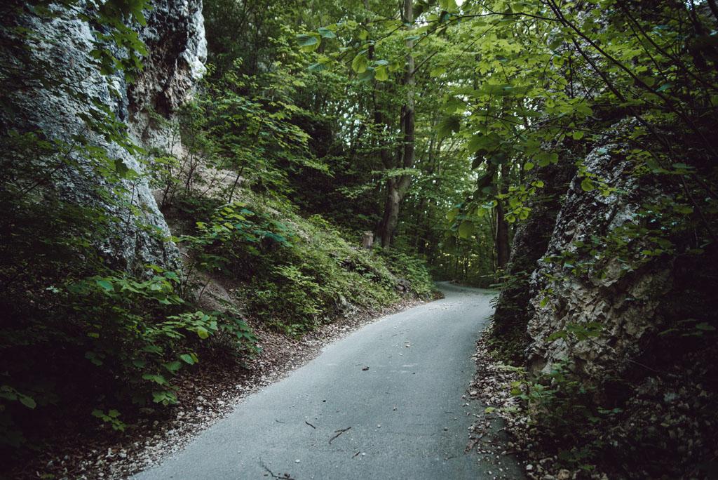 Droga z Doliny Będkowskiej