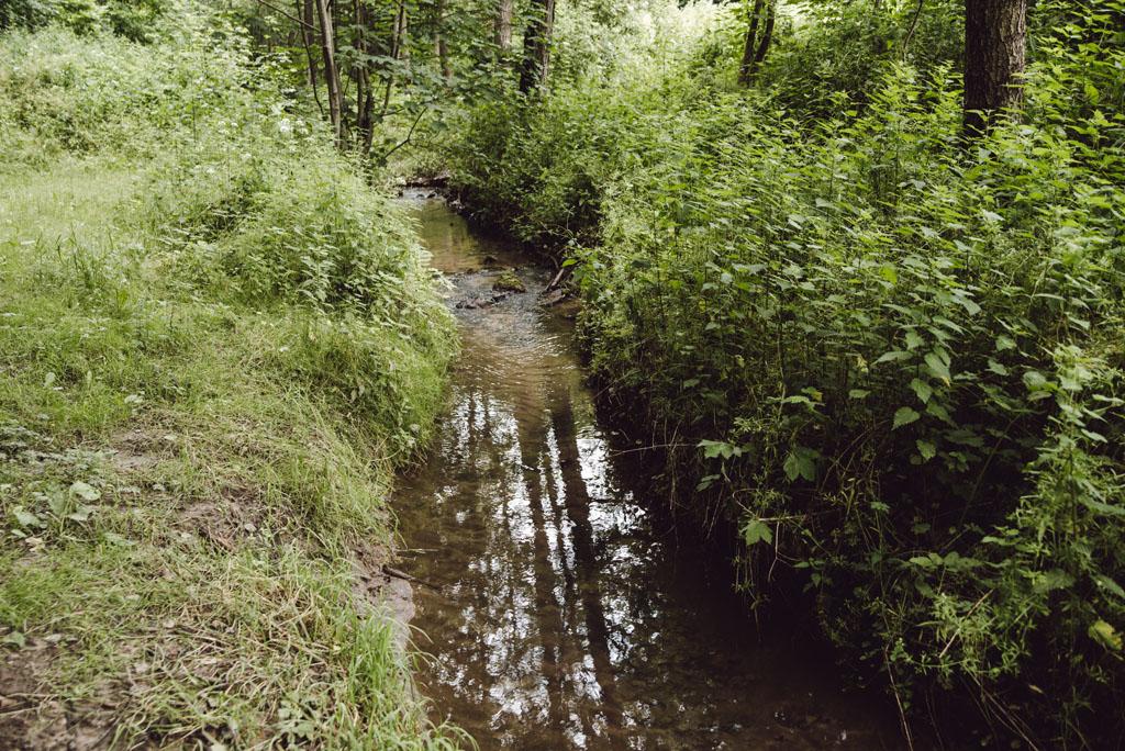 Dolina Brzoskwini