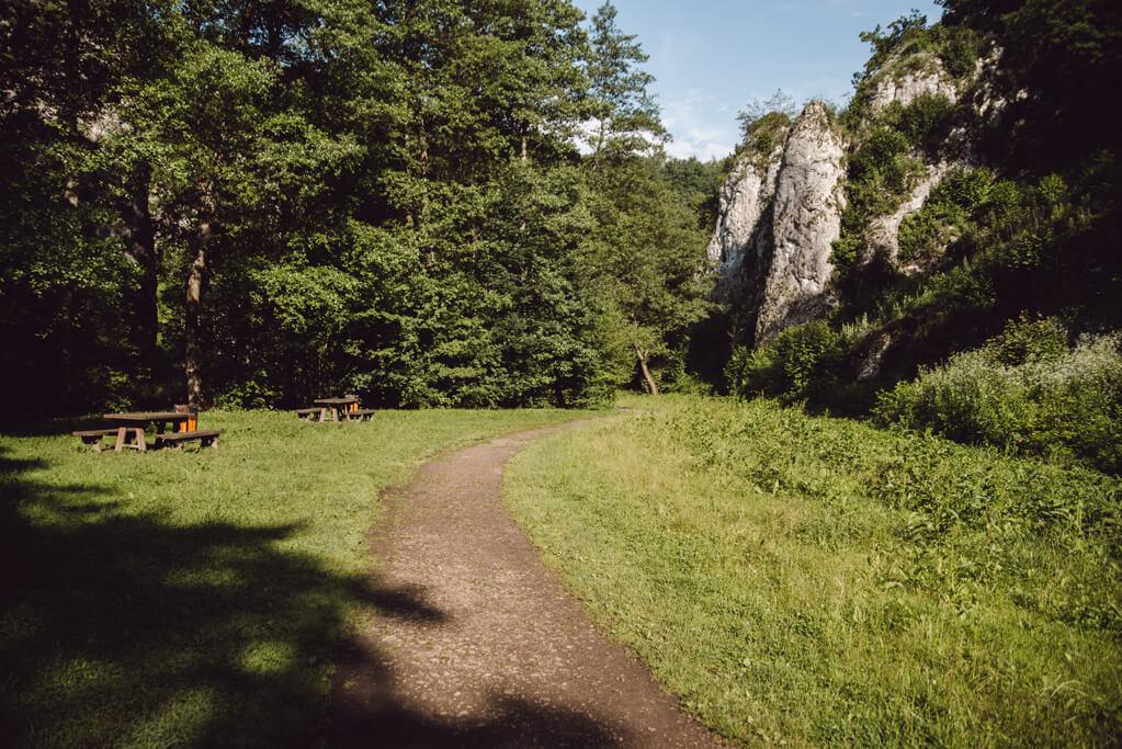 Ścieżka prowadząca przez Dolinę Mnikowską