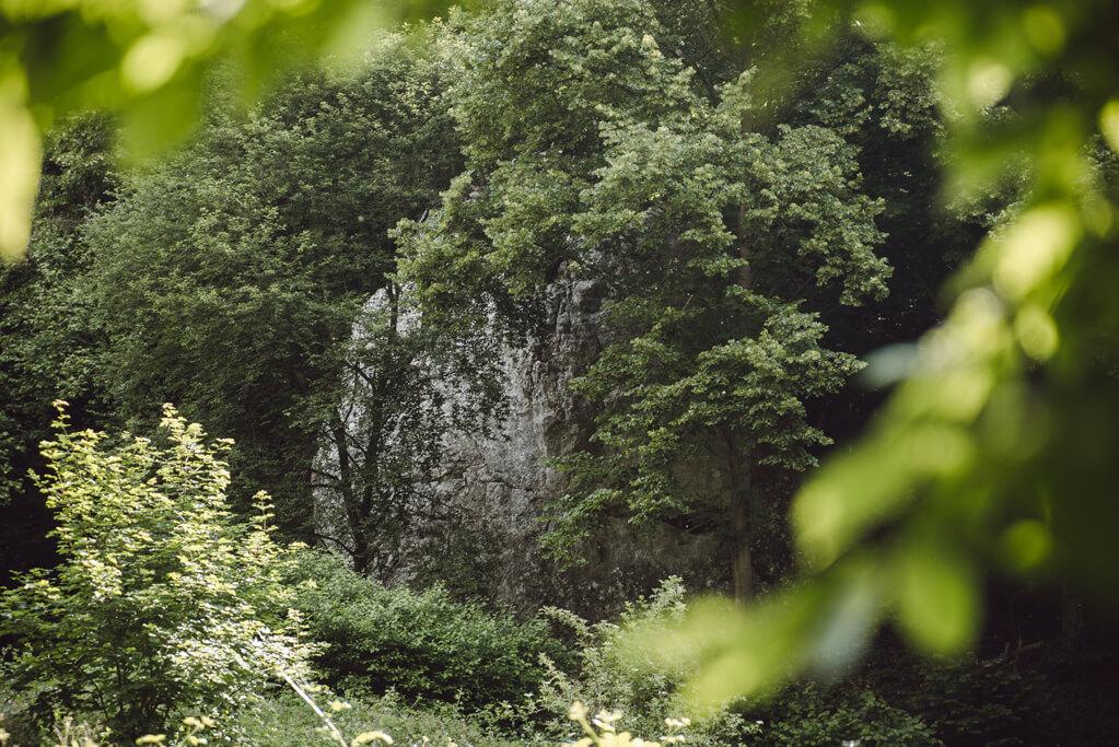 Wąwóz Półrzeczki i skały