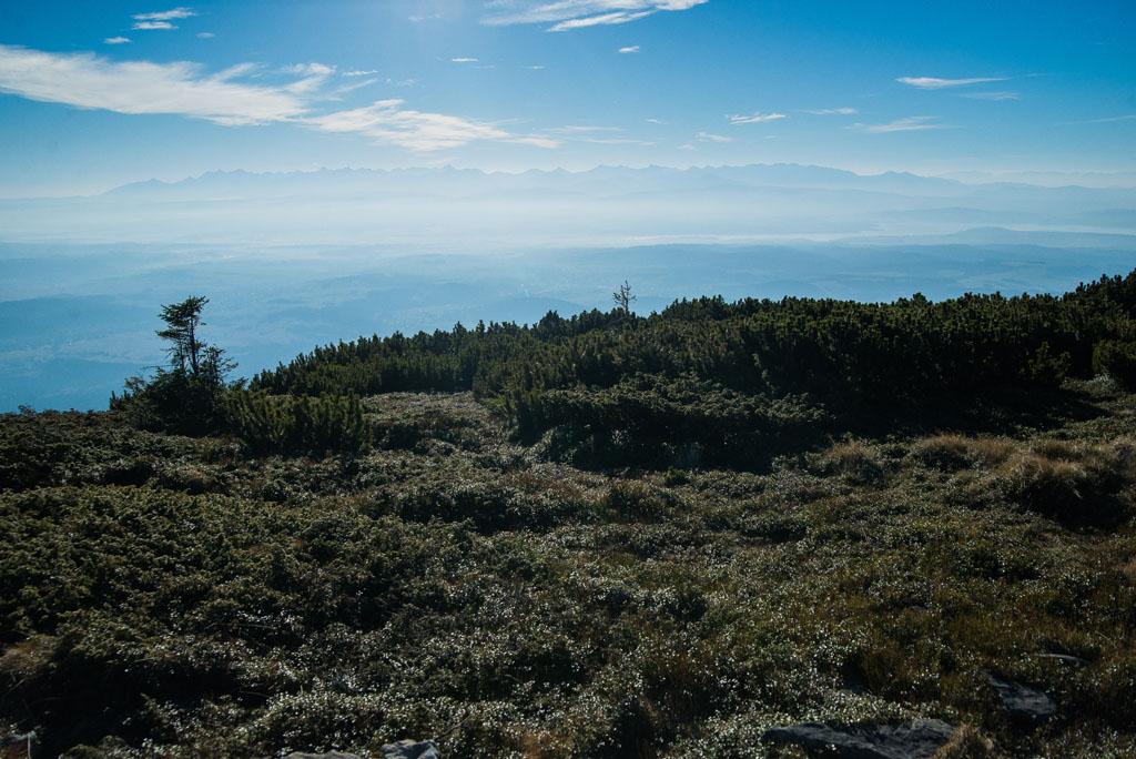 Babia Góra - szczyt w Beskidzie Żywieckim
