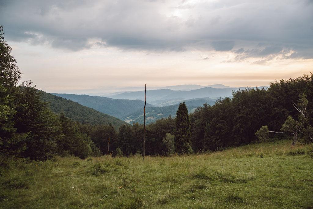 Beskid Niski widziany ze szlaku na Jaworzynę Kokuszczańską