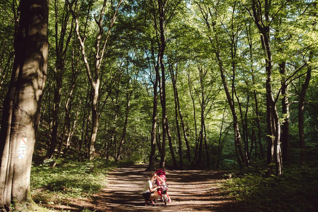 Trasa z dzieckiem do Doliny Racławki