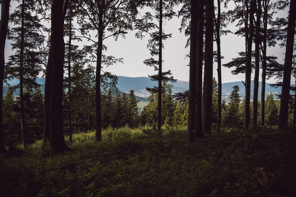 Kostrza - krajobrazy Beskidu Wyspowego