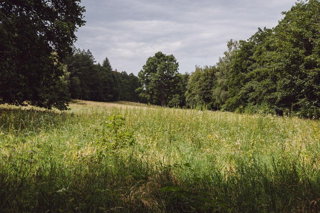 Krajobrazy Pogórza Kaczawskiego