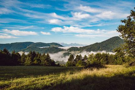 Palenica- szczyt w Pieninach