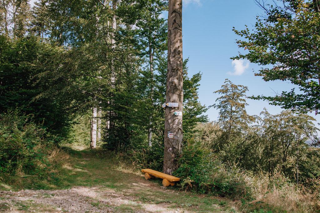 Przełęcz Isepnicka