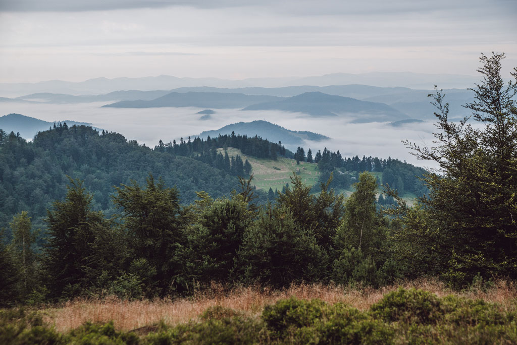 Szczyty słowackie widziane z Jaworzyny Kokuszczańskiej