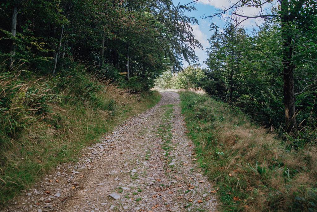 Szlak Przełęcz Isepnicka