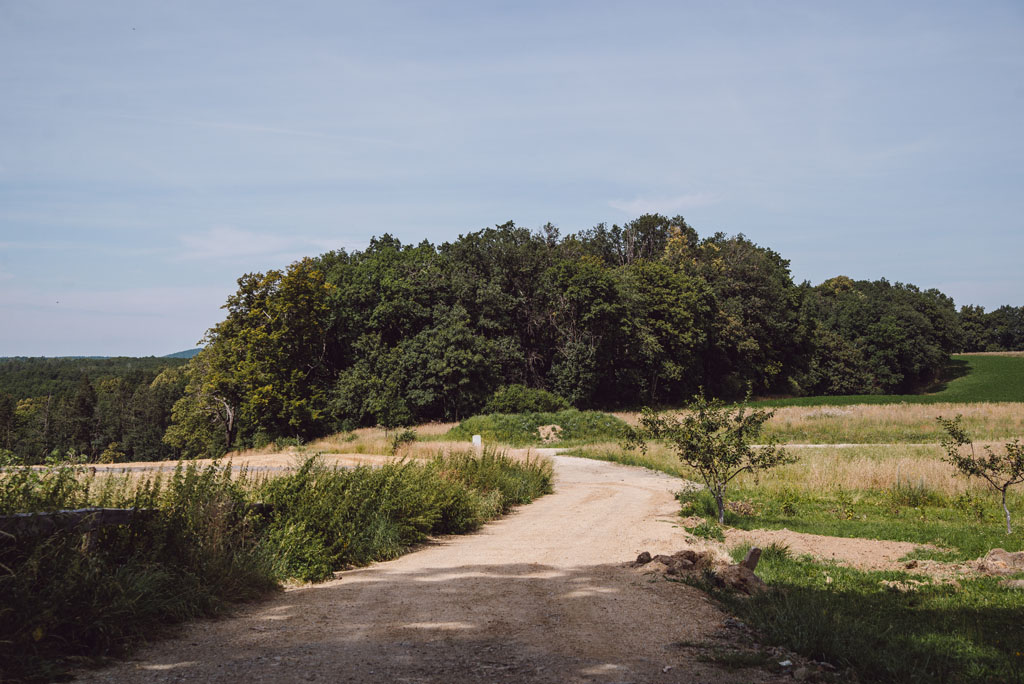 Droga dojściowa do Wąwozu Myśliborskiego