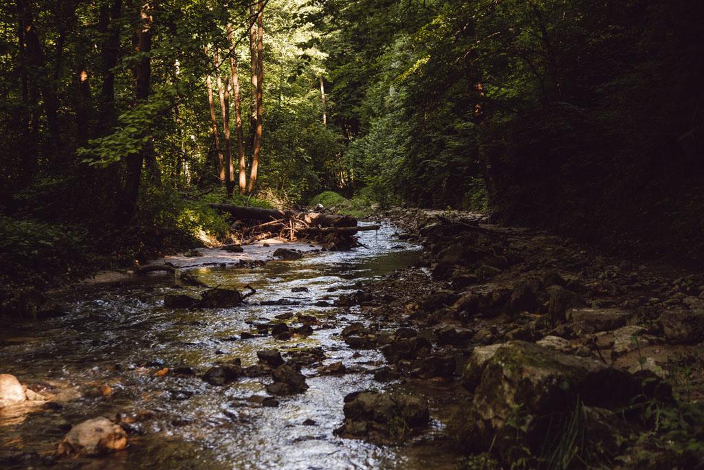 Wąwóz Stradlina w Dolinie Racławki