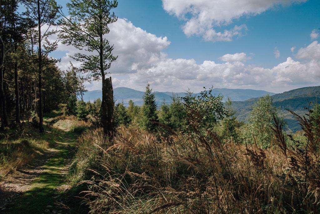 Widoki spod Jaworzyny w Beskidzie Małym