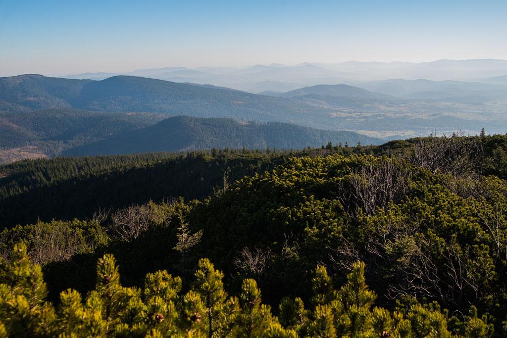 Widoki spod Babiej Góry