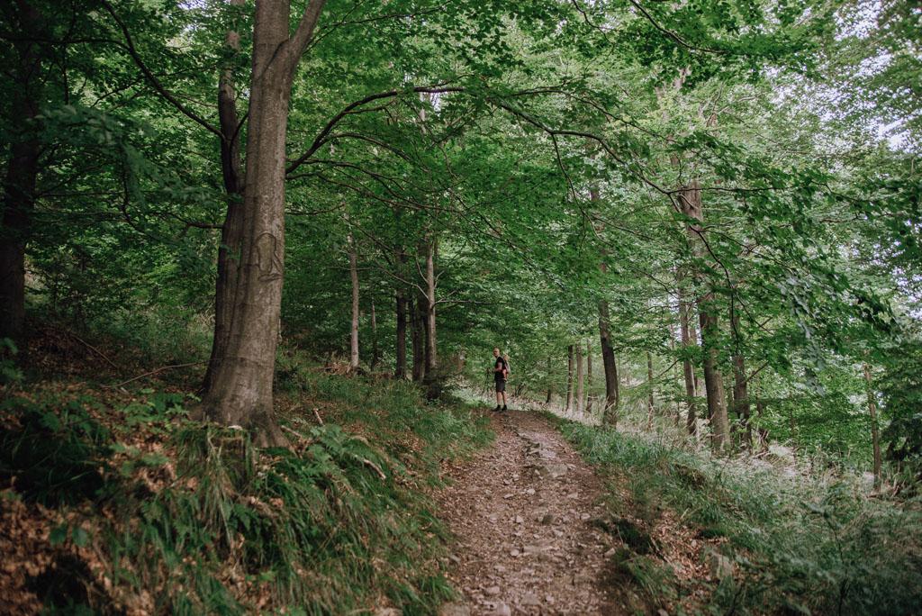Niebieski szlak na Hrobaczą Łąkę
