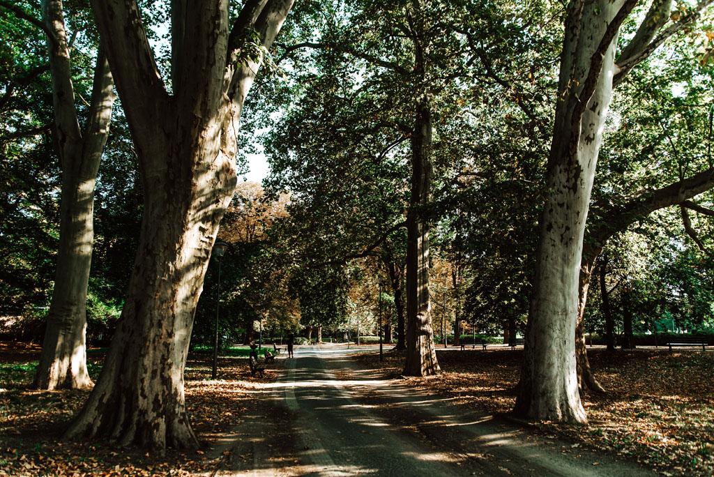 Park Juliusza Słowackiego we Wrocławiu