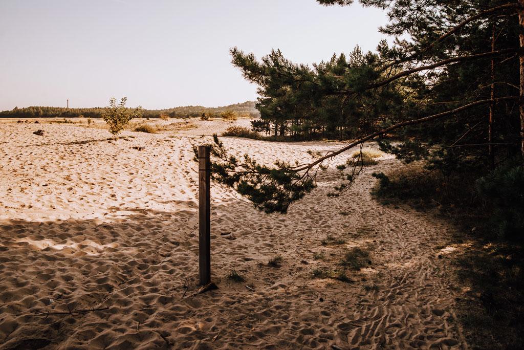 Szlak przez Pustynię Błędowską