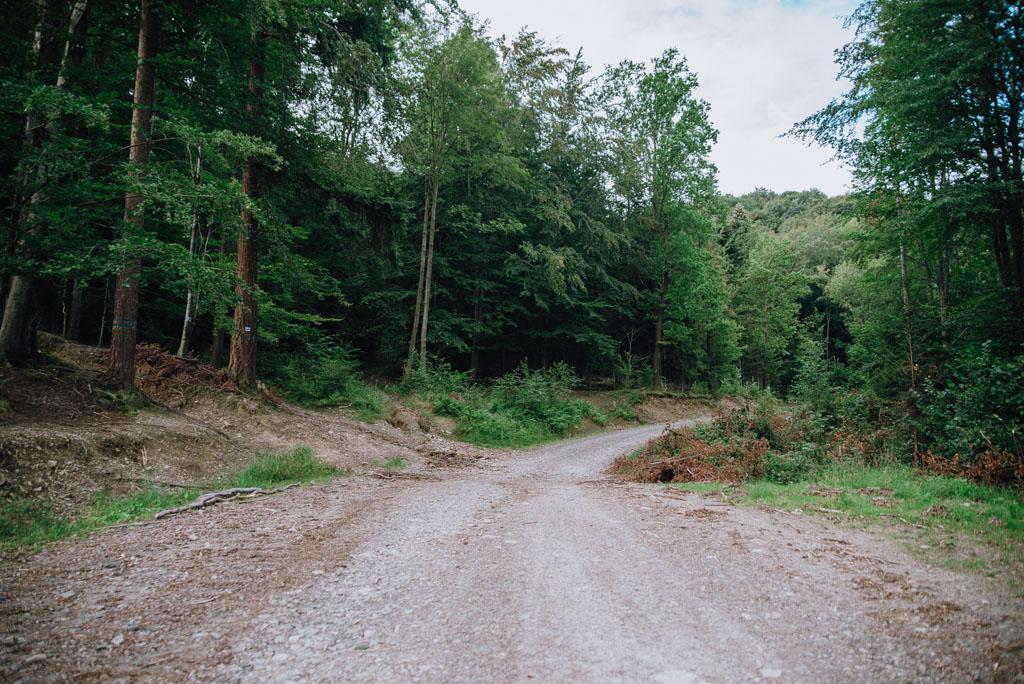 Szlak niebieski z Bielska-Białej na Gaiki