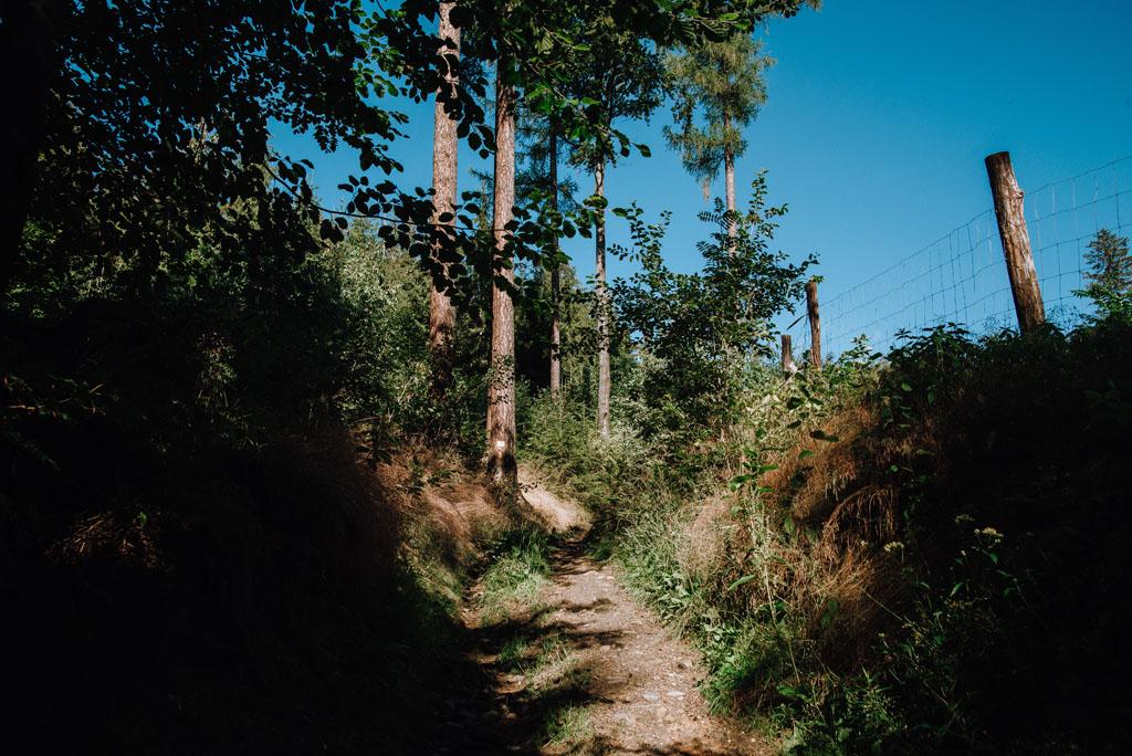 Początek szlaku żółtego na Okole