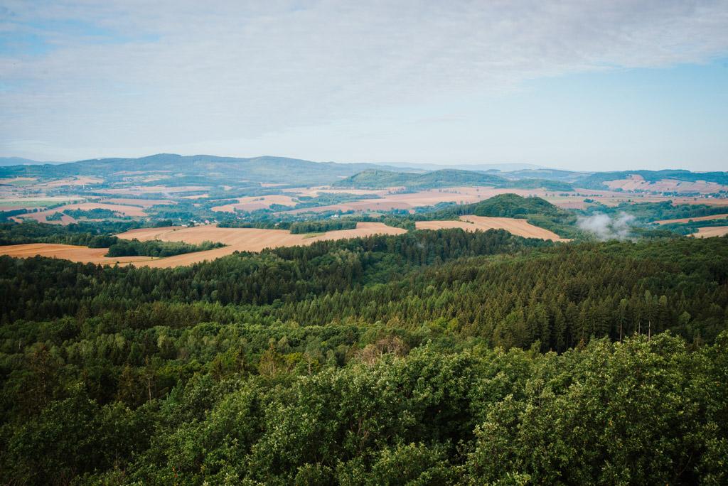 Widoki z wieży widokowej w Gozdnie