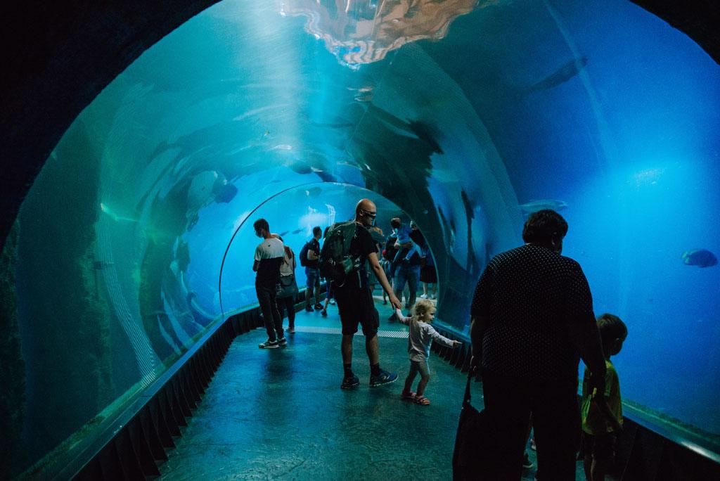 Wrocław tunel wodny