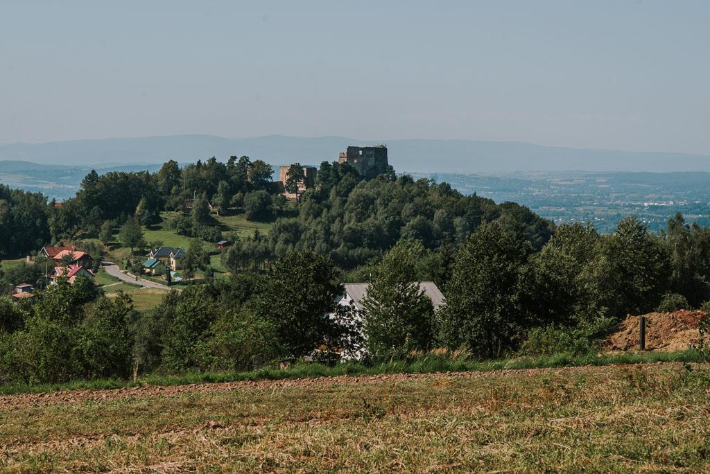 Zamek Odrzykoniu