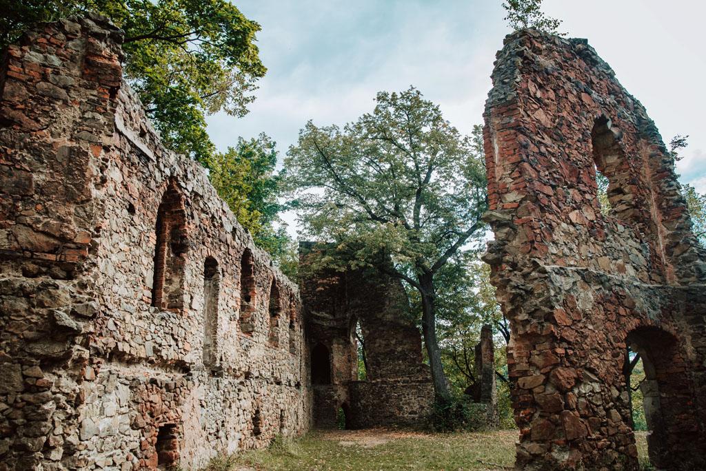 Ruiny Zamku Stary Książ w Wałbrzychu