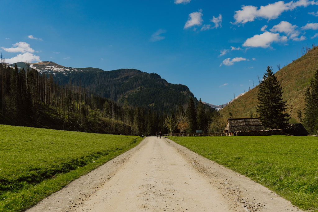Wyżnia Kira Miętusia - Dolina Kościeliska