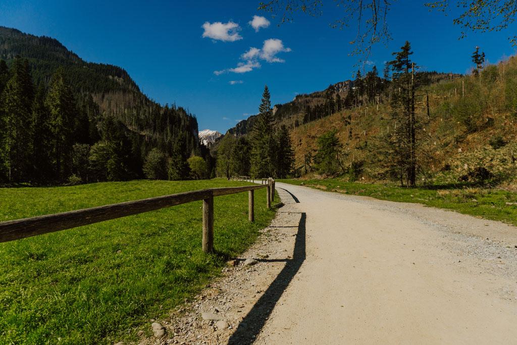 Przez Dolinę Kościeliską prowadzi szlak koloru zielonego