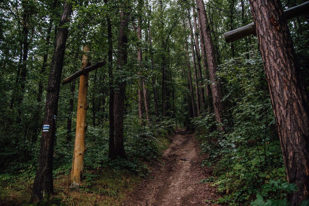 Droga krzyżowa na Górzec