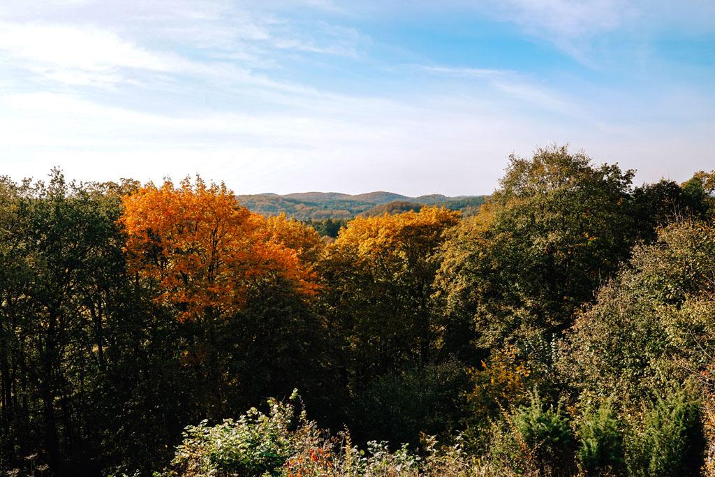 Jesień na Jurze Krakowsko-Częstochowskiej
