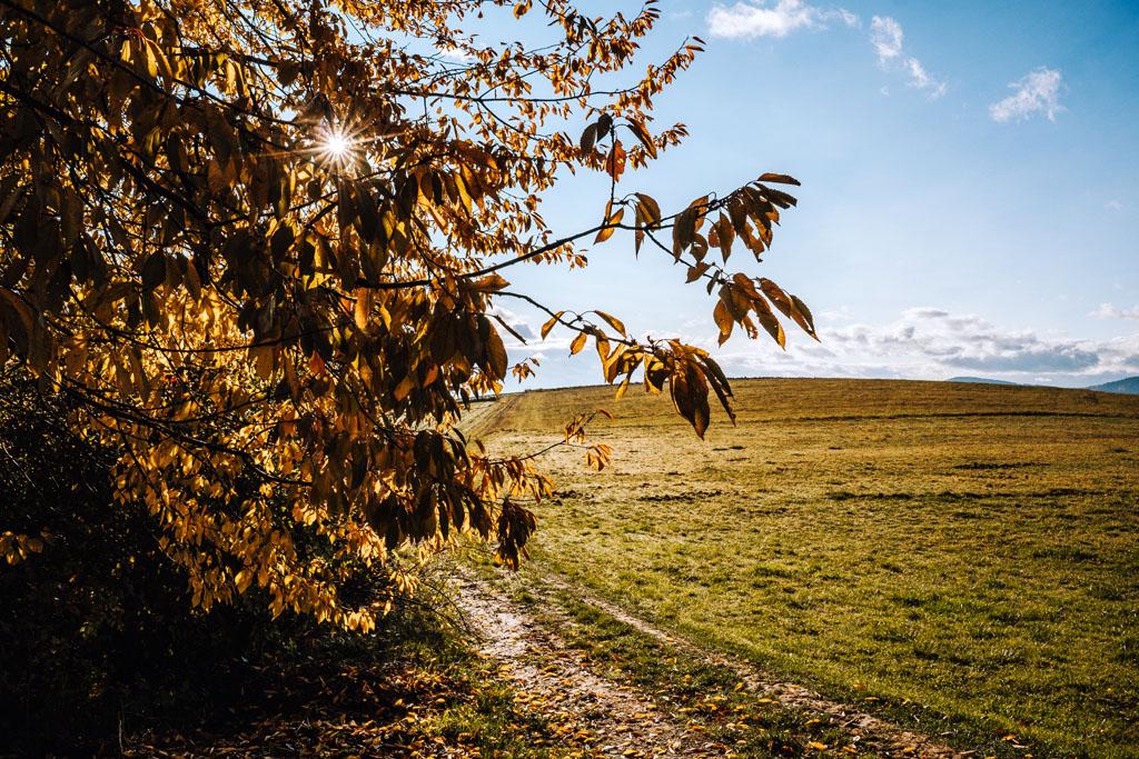 Jesień w Korzennej