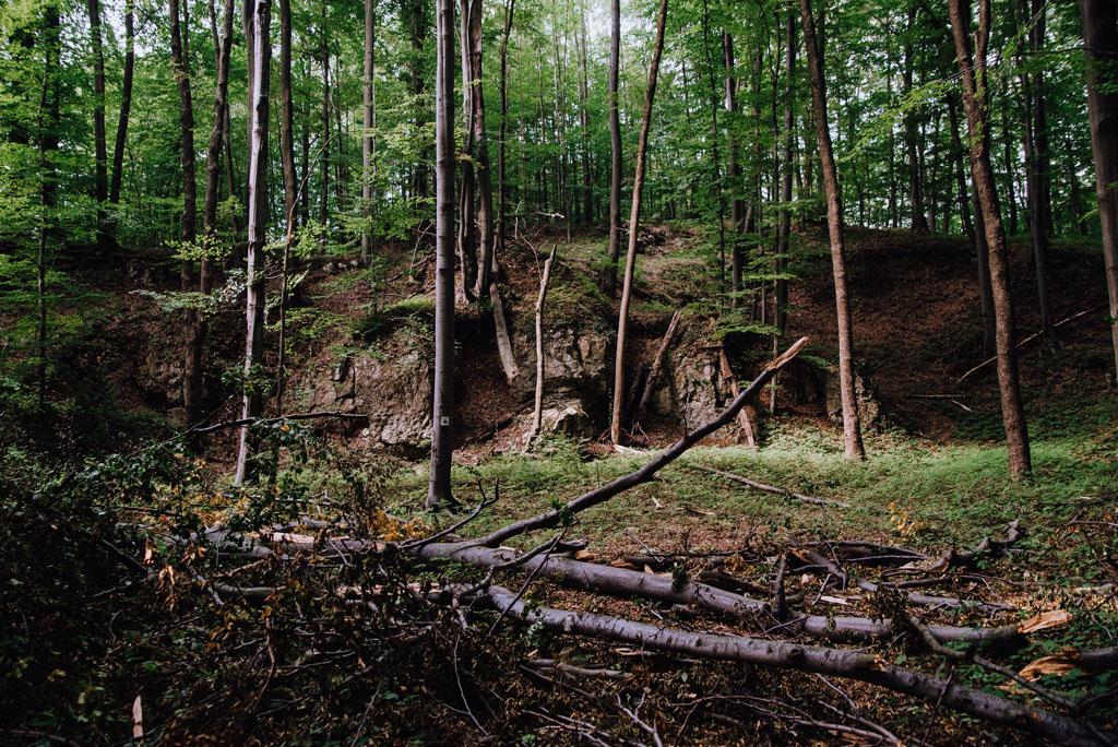 Pozostałości kamieniołomu w Jaroszowcu
