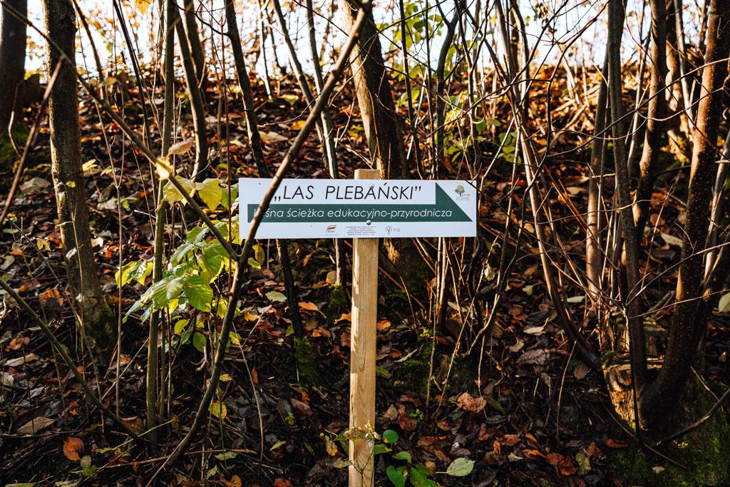 Znak wskazujący ścieżkę Las Plebański