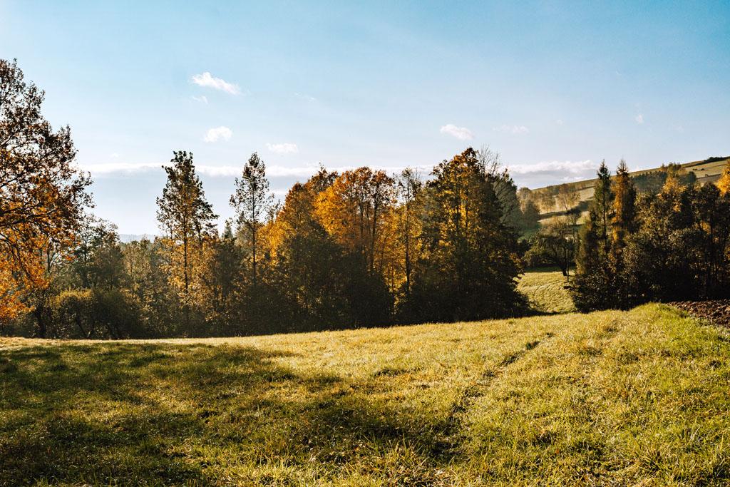 Widoki na ścieżce Las Plebański