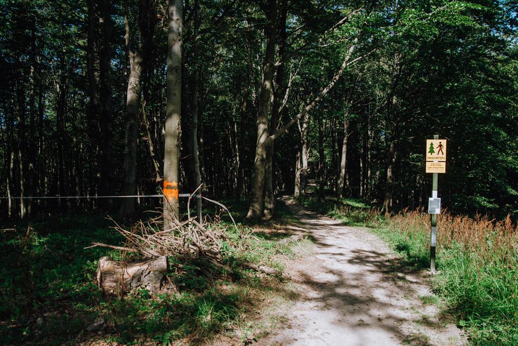 Obejście prac leśnych