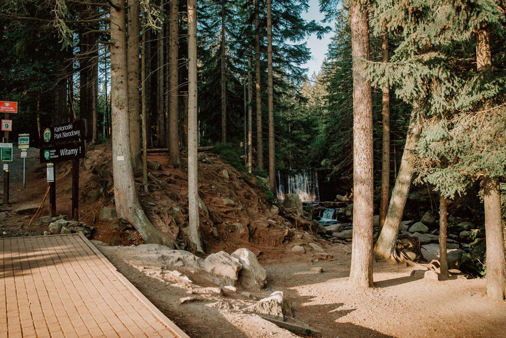 Trasa do Wodospadu Dzikiego