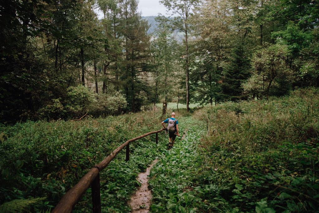 Zejście żółtą ścieżką z Gromadzynia do Jasienia