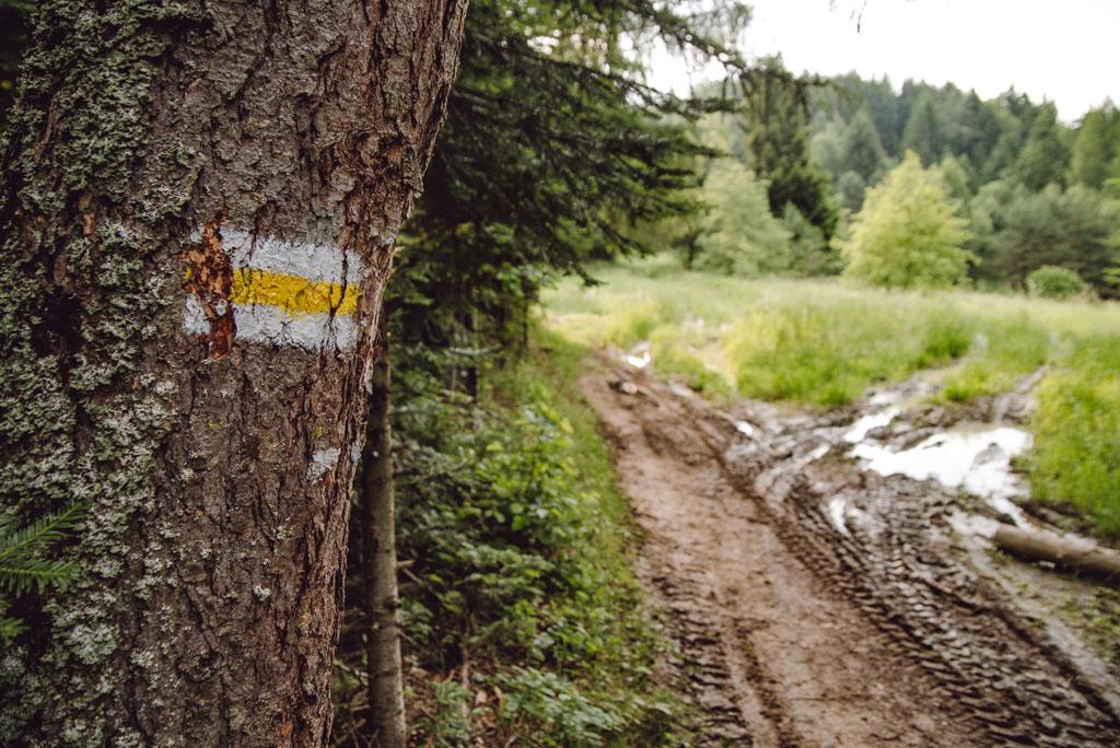 Żółty szlak Malnik