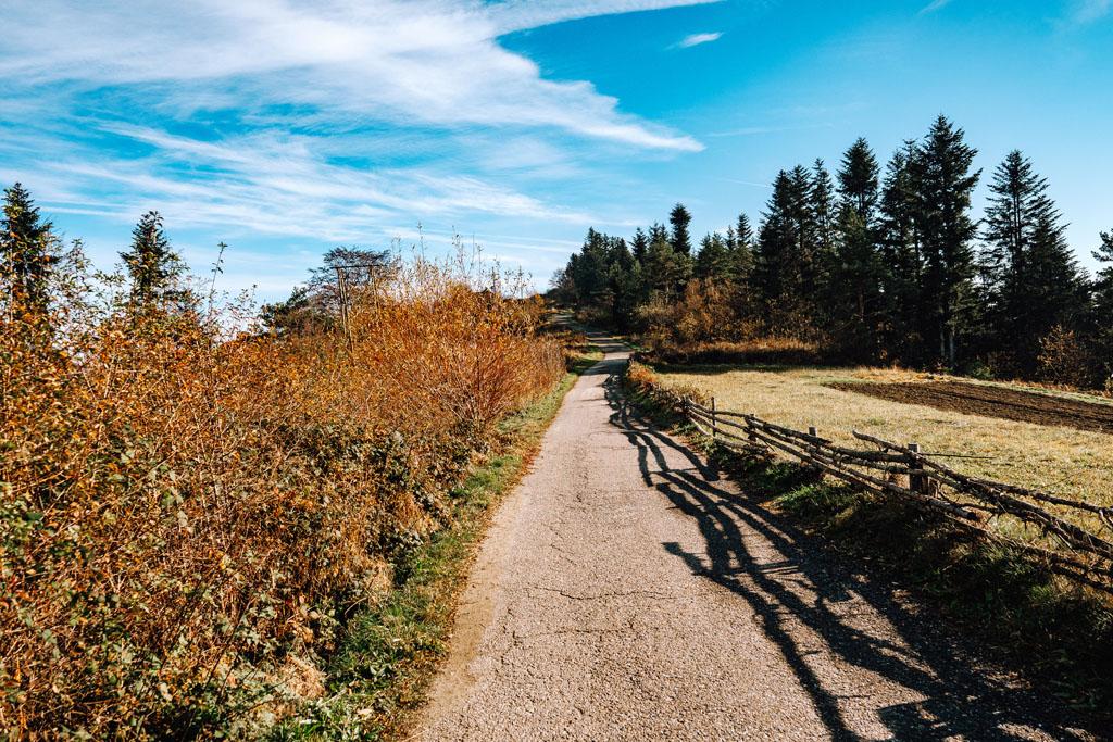 Asfaltowa droga z Chełmu