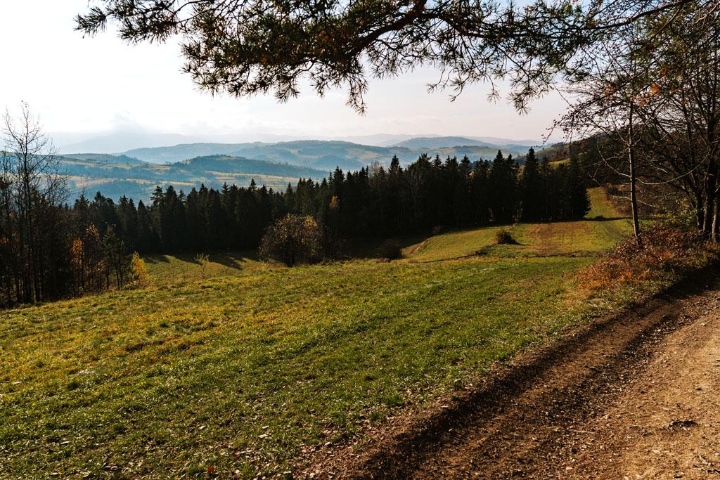 Widok z Mszany Dolnej