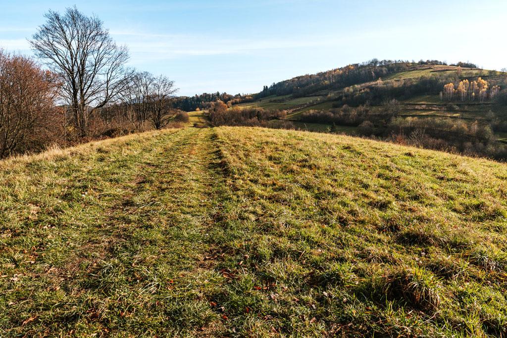 Droga powrotna do żółtego szlaku, a po prawej stronie szczyt Wsołowa 624 m n.p.m.