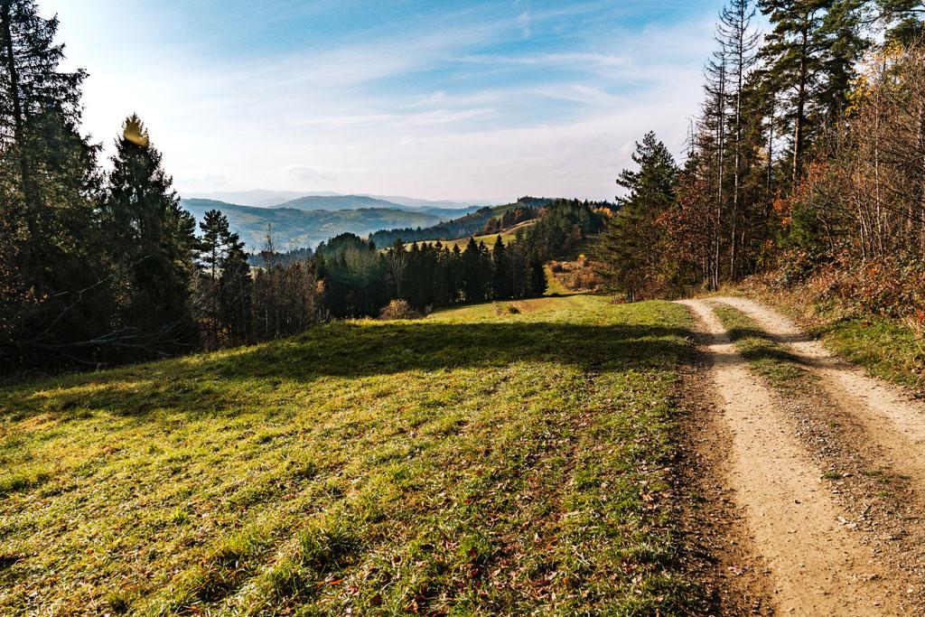 Szlak z Mszany Dolnej na Ćwilin
